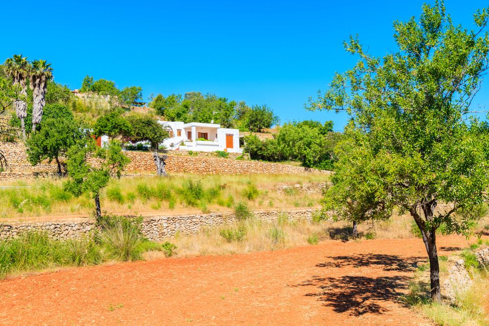 The growing appeal of rustic properties in Ibiza
